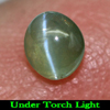 Unheated 0.65 Ct. Oval Cabochon Natural Gemstone Green Cats Eye Alexandrite