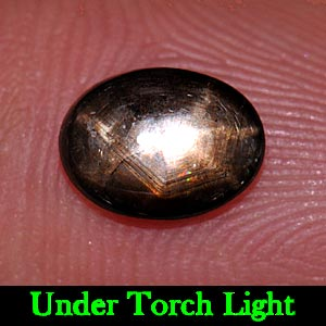 1.50 Ct. Oval Cab Natural Black Star Sapphire 6 Rays
