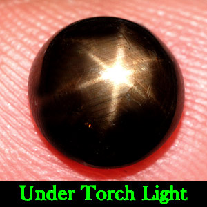 2.97 Ct. 8 Mm. Natural Gem Black Star Sapphire 6 Rays