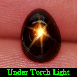 1.34 Ct. Pear Cabochon Natural Gem Lucky 6 Ray Yellow Star Sapphire