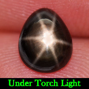1.63 Ct. Natural Gemstone Lucky 6 Ray Black Star Sapphire Pear Cabochon