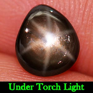 1.21 Ct. Pear Cabochon Natural Black Star Sapphire 6 Rays