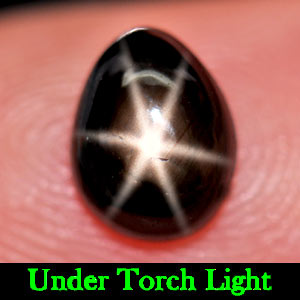 1.80 Ct. Natural Gemstone Lucky 6 Rays Black Star Sapphire Pear Cabochon