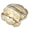 Unheated 377.49 Ct. 60 x 54 Mm.Natural Brown Color Petrified Wood Turtle Carving