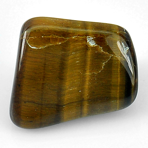 19.57 Ct. Natural Fancy Cabochon Tiger Eye Agate Madagascar Unheated
